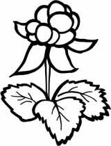 Gravstein Multe blomst