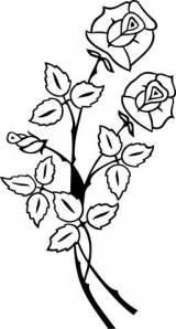 Gravstein 5218 Rose